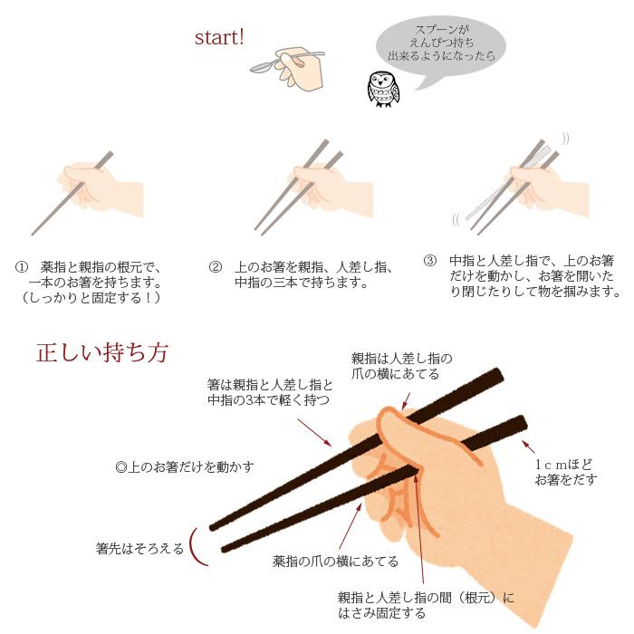 箸の持ち方 子ども編